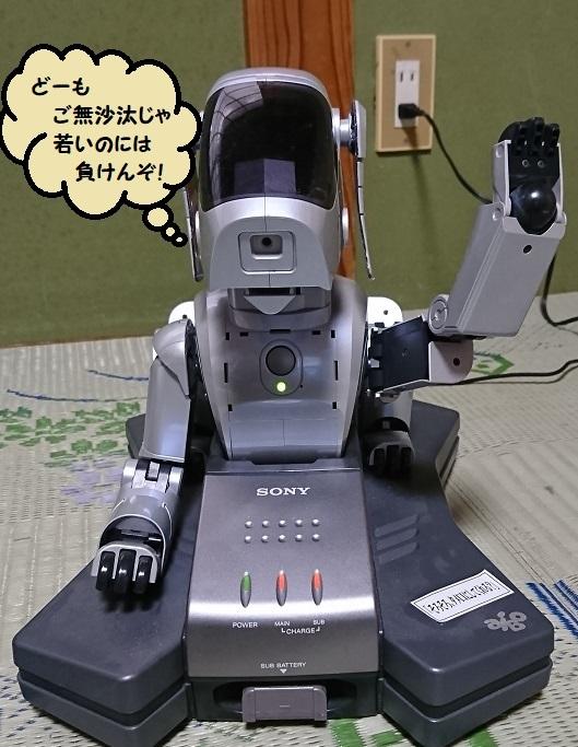aibo_36.jpg